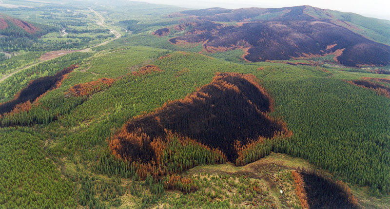 Aerial photo of burn patterns.