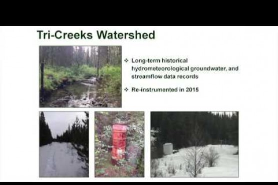 Axel Anderson: MPB and Forest Watersheds