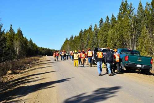 Tour participants walking from their vehicles on a forestry road.