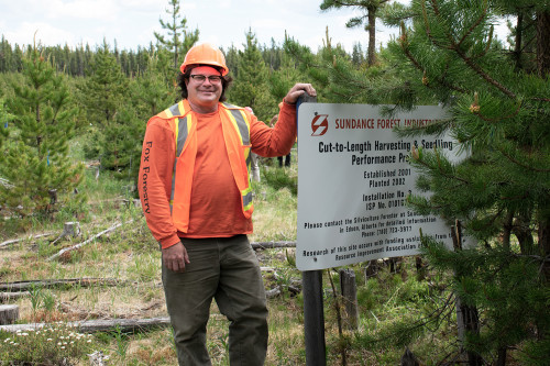 Man in PPE standing beside a sign in a forest announcing a site preparation trial, installed long ago by Sundance.