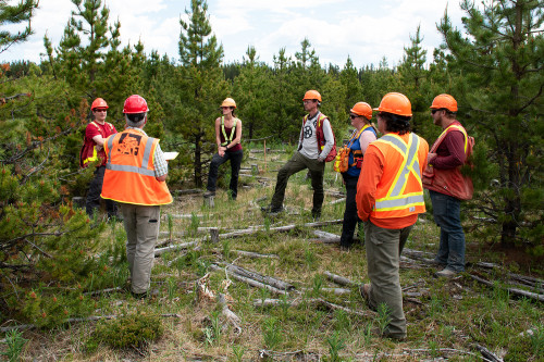 People in PPE gathered in a circle in a forest