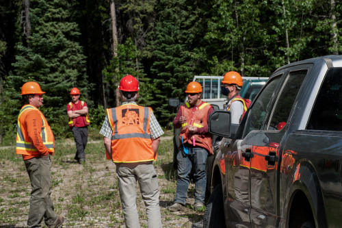 People in PPE standing near trucks, in a forest.