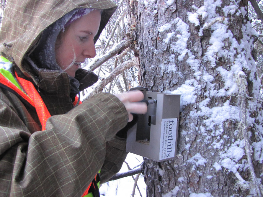 Becky Setting up a Trailcam