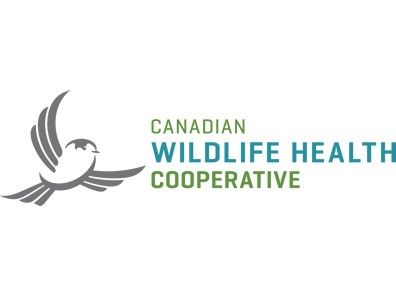 Canadian Wildlife Health Cooperative