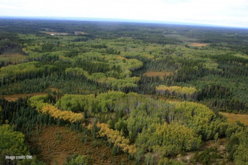 Aerial photo of harvested landscape near Peace River.