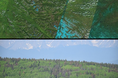 Satelite and on-the-ground images of forested landscape in west-central Alberta.