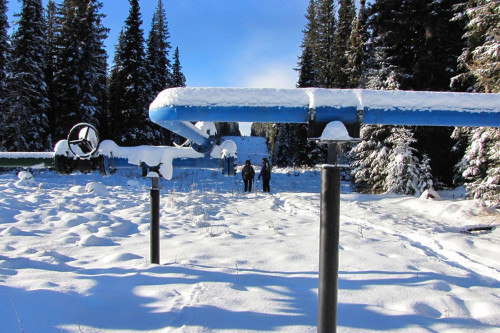 Snowy pipeline in the boreal forest