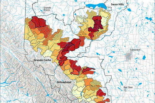 Map of road densities in grizzly bear habitat