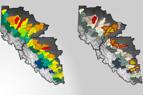 2 maps of grizzly bear carrying capacity in western Alberta. 60 watershed units are coloured based on difference between carrying capacity and number of resident bears.
