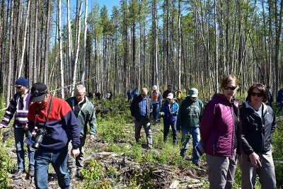 It was a perfect day to visit the six research sites. Some things being tested are partial harvest of affected stands, reforestation strategies, and affect on wildfire fuel.